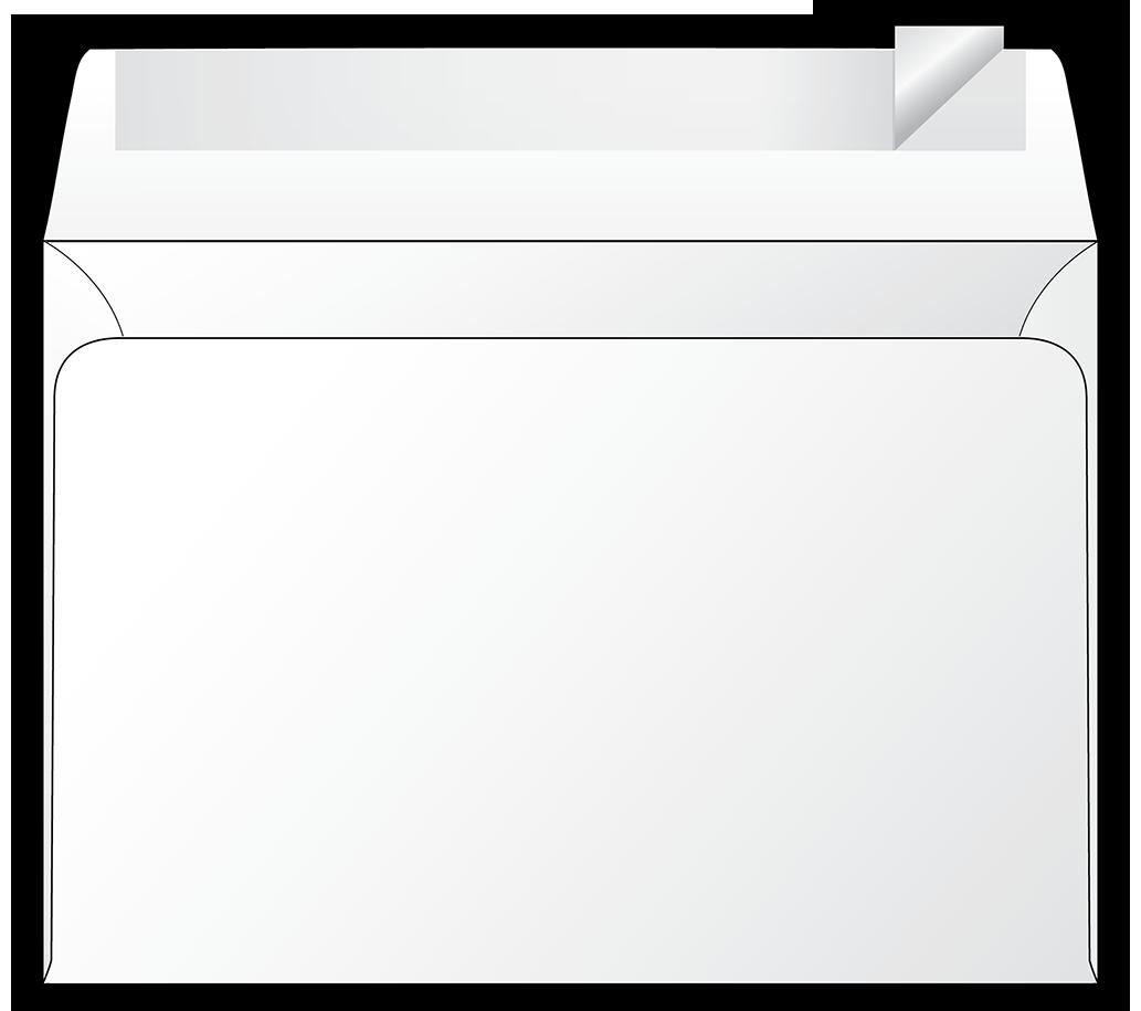 SNC6L/SNC6R